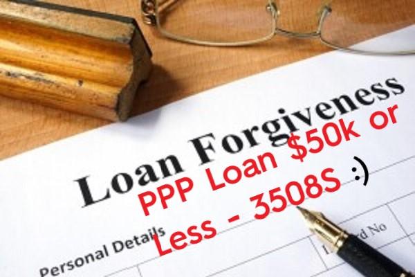 Loan Forgivness 3508S